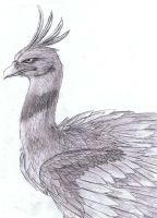 Realistic Ho-oh Sketch by Kyuubi0017