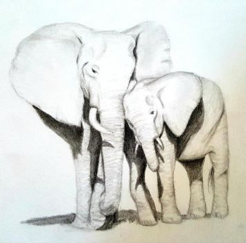 Mother elephant and baby by skinlela