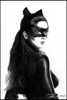 Catwoman - Anne Hathaway by foxartsbrazil