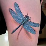 Dragonfly by amduhan