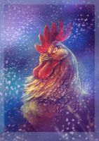 The Coolest Rooster by Fany001