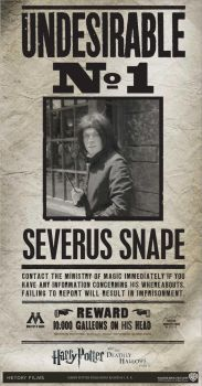 Wanted: Severus Snpae by MadDeppBurtonHatter