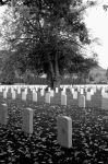 Military Cemetery by mpak87