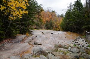 White Mountains  Fall Foliage  200 by FairieGoodMother