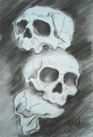 skull collection by AsatorArise
