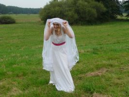 bride on a field - under the veil 2 by indeed-stock