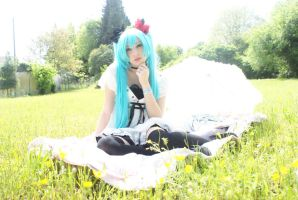 Cosplay Miku Hatsune 4 - World Is Mine (Vocaloid) by NyuSho