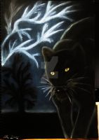 Black Leopard in the Storm by SilverSoul1496