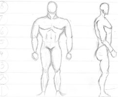 anatomy male redo and side by Freshbreath3