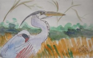 NANODRAWMO 2014 Great Blue Heron by Vampiric-Conure