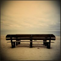 Holga 46 by xxlogre
