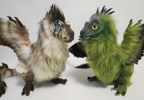 Feather-Raptors by kimrhodes