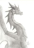 European Dragon by Cylinder-the-Autobot