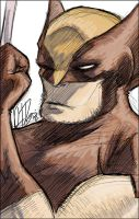 Wolverine Sketch for You by dio-03