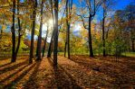 The colors of Fall... _96_ by my-shots