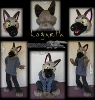 German Shepherd Head by whitewolf