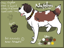Napoleon ref .:RQ:. by RippedMoon