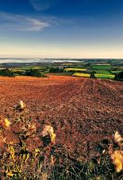 View from Scrabo Hill by Gerard1972