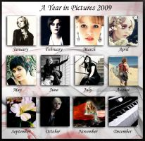 A Year in Pictures 2009 by kerkera