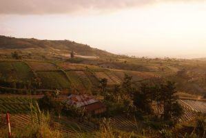 Javan Countryside by efleck