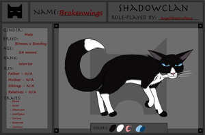 Brokenwings Application - ShadowClan - WotW by AngelShadowRena