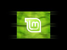 Linux Mint Lines 1024 by Kalca