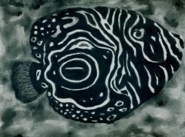 Charcoal black fish by KB-Shine