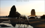 WHITE LIES by Cantatus-Promise