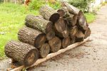 Wood Stack Stock by dinodude411