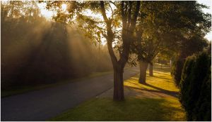 peaceful morning by Cailleach-Verinen