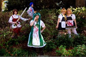 Forever Lost in Wonderland by Twin-EdgeCosplay