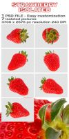 Strawberry Isolated by rejmann
