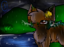 Stand in the Rain, Stand your ground by misothekitty