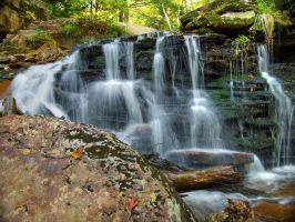Ricketts Glen State Park 89 by Dracoart-Stock