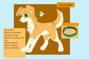 Cassie Dog Adoptable .:Open:. by Love-Adopts