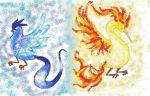 Articuno and Moltres by Claudia-Sierra