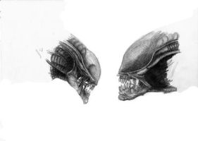 Alien drawing_face to face by dreamwalker001a