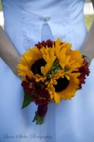 Gerbera Bouquet by QueenSheba24