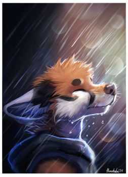 Rain by thanshuhai