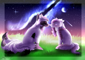 .:Under The Stars:. by DarkWolfArtist