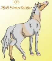 2849 KFS Winter Solstice by rempage