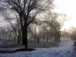 a walk in the park by JDAWG9806