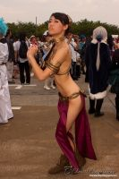 Slave Dancer Leia 008 by DownFall2448