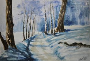 The winter is comeing by Marcysiabush