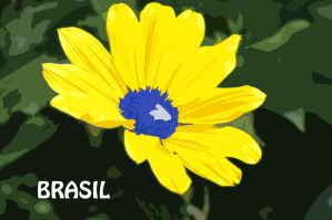 Brasil Wallpaper by tesumii