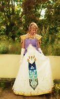 Zelda Cosplay Edit by xxDraconikaxx