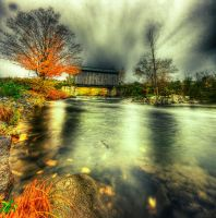 Fall Foliage by IraMustyPhotography