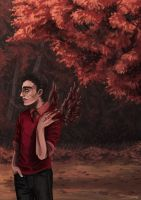 As Red as the Autumn Leaves. by land-walker