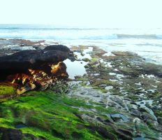 The Earth of Tanah Lot Bali by Lyra03