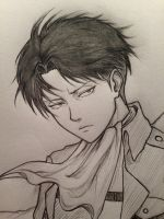 Levi by JainaNaberrie